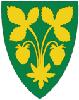 Kommune